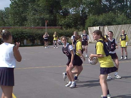 Netball picture